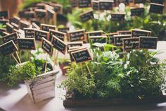 Herb Escort Cards