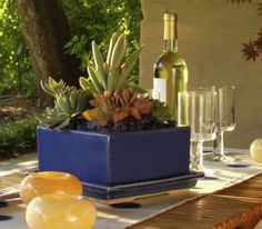 Dress up a patio table with a low-fuss grouping of succulents—cacti, jade plants, aloe—like this idea from Sunset.com.