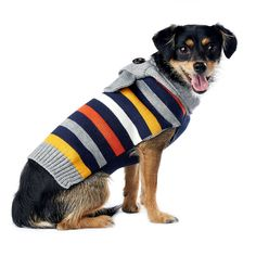 Striped Hooded Dog Sweater Pinned by www.thedapple.com | Design | Dog Shirts | Dogs | Dog Fashion | Dog Training | Raising a Puppy | Stylish Dog Clothes | Funny Dog Clothes | Best Dog Clothes |  Dog Clothes DIY | Dog Sweater| Dog Boutique | Dog Knit Clothes | Dog Hoodies | Dog Sweatshirt | Dog Onesie |