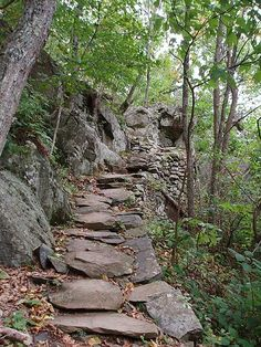 Shenandoah Valley hiking trail--I'm so ready for camping and hiking!!