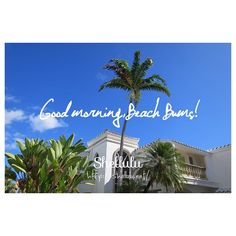 . ALOHA  FRIDAY . . #shellulu #goodmorning #hello #sunny #summer #bluesky #palmtree #paradise #hawaii #lanikai #resort #beachlife #beachbum #aloha #friday #TGIF #photograph #phototakenbyme