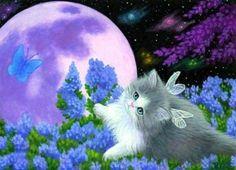 Fairy Kitty HD Desktop Wallpaper