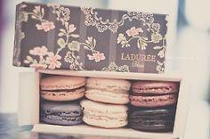 Laduree - Mmmmm