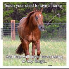 Horses are expensive they won't have time or money for drugs!