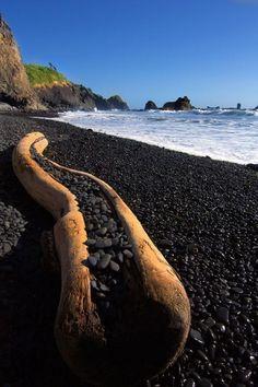 Black Pebble Beach, Oregon