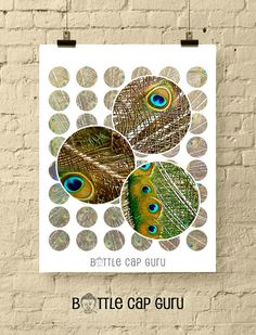 Peacock Feathers 1 Inch Circles / Printable Digital Collage Sheet / Feather Peacocks Decor Bottle Ca Funny Greetings, Funny Greeting Cards, Birthday Cards For Him, Peacock Decor, Bottle Cap Images, Peacock Feathers, Digital Collage, Collage Sheet, Jewelry Crafts