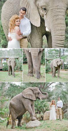 zoo wedding ideas