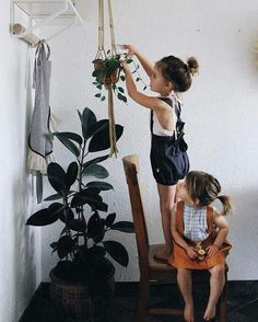 Little girls and houseplants                                                                                                                                                                                 More