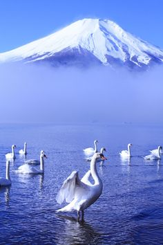 This moment will never come again.(Image: Mt. Fuji, Japan)