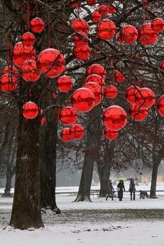 Inspiring Outdoor Christmas Decorations With Shiny Red Balls Hanging On Large Trees With Outdoor White Christmas Lights And Outdoor Lighting, Cool Ideas For Outdoor Christmas Decorations: Exterior