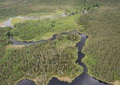 Ilmakuva 2013 (9709920289) - Sotkamo – Wikipedia Finland, Countries, River, Outdoor, Outdoors, Outdoor Games, Outdoor Living, Rivers