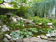Image result for backyard landscape design with koi pond