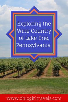 Come visit Lake Erie Wine Country with Ohio Girl Travels as she stops at wonderful wineries along the way. Enjoy an afternoon lunch with a glass of wine. Travel With Kids, Family Travel, Travel Guides, Travel Tips, Erie County, Great Lakes Region, Relaxing Day, Lake Erie, Wine Country