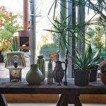 alle-planten-verzamelen