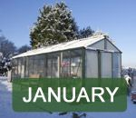 Jobs in the garden - January
