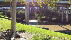 Art Park & Buffalo Bayou at Sabine Street Bridge