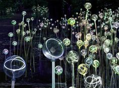 Forest of Light by Bruce Munro