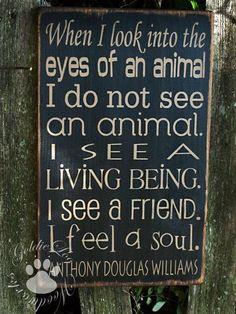 Helping Tipton County Animal Shelter - FB