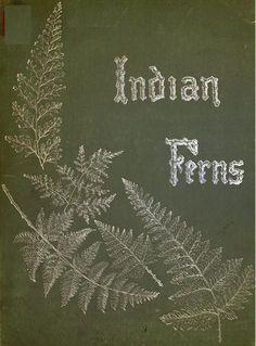 old fern book