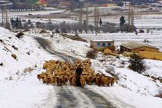 to the north (Morocco in winter)
