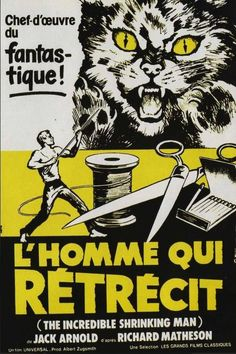 French Poster for The Incredible Shrinking Man