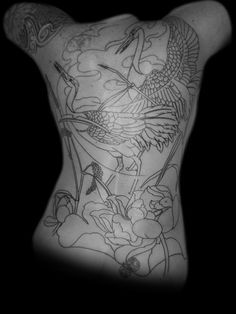 Japanese Red Crested Cranes Tattoo the first session! http://creativetattoo-space.com