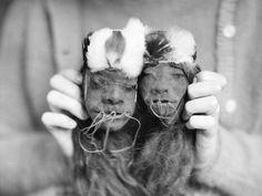 Shrunken heads from Ecuador