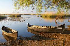 Old boats at the sunset. Old boats at Danube delta , Danube Delta, Lake Painting, Lake Art, Old Boats, Danube River, Europe, Paradis, Lake Life, Fishing Boats