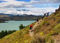 In our latest #travel blog article, we provide you with a guide to the best day & half-day hikes in #Chile's spectacular Torres del Paine National Park. #Patagonia @chiletravel @bbctravel @natgeotravel