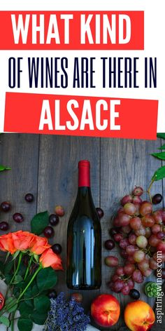 Wine Tasting in Alsace: What Kind of Wines are There in Alsace? Wines in Alsace| What Wine to Drink in Alsace| Alsace, France Wine Tasting| #alsacewineroute #wineroute #winetasting #wine #alsace  via @aspiringwinos Cheese And Wine Tasting, Wine Tasting Party, Wine Parties, Wine Cheese, White Wine Grapes, Red Grapes, Pinot Blanc, Pinot Noir, Muscat Wine