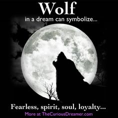 Here's what a wolf can mean as a dream symbol... More dream symbol meanings at TheCuriousDreamer....  #dreammeaning #dreamsymbol
