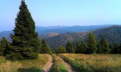 Levočské vrchy z Čiernej Hory Mountains, Nature, Travel, Naturaleza, Viajes, Destinations, Traveling, Trips, Nature Illustration