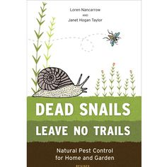 Ants, Bedbugs and Dust Mites: DIY Natural Home Pest Control Solutions - Healthy Home - Mother Earth Living