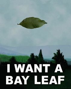 i want a bay leaf