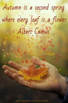 Autumn is a second spring where every leaf is a flower. - Albert Camus