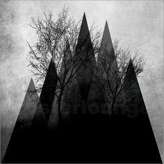 Pia Schneider atelier COLOUR-VISION - TREES VI #kunst #poster #kunstdrucke #piaschneider #ateliercolourvision #posterlounge #ebay #amazon #art #trees #branches #geometric #triangles #blackandwhite #gray #elegant #dark #abstract #illustration