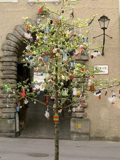 egg tree via travelwebshots