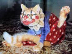 ... are just a drop in the bucket of the many strange and fanciful photographs found in the weird book Why Paint Cats by Burton Silver and Heather Busch.