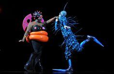 Attend a Cirque du Soleil Show!