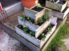 Strawberry pyramid...a way to plant strawberries vertically but also in a container.  I like this idea because it's technically moveable still but would hold quite a few plants.