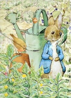 Peter Rabbit is my Beatrix Potter favorite - but I must admit I love them all.