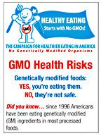 Nutrition for Healthy Kids: Lesson 3 / Genetically Modified Foods assignment - Google Drive