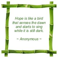Hope is like a bird that senses the dawn and starts to sing while it is still dark.