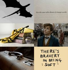 Newt Scamander ↳ We're going to recapture my creatures before they get hurt. They're currently in alien terrain surrounded by millions of the most vicious creatures on the planet; humans.