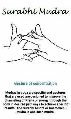 - you're invited - Concentration mudra Ayurvedic Healing, Ayurveda, Qi Gong, Yoga Sequences, Yoga Poses, Chakras, Meditation Exercises, Asana, Chakra Meditation