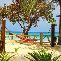 Hammock in the sun ~ Culebra, Puerto Rico