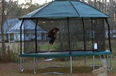 15FT Trampoline Canopy | Jumpking JumpPod ELITE 15 ft Trampoline - Enclosure Included! Reviews ...