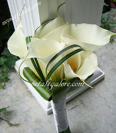 Lindo bouquet de cartuchos (calas)