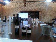 Botella del #vino creado por los propietarios y dos muestras mejorantes ¿ Sabéis que es Singular #Wine?