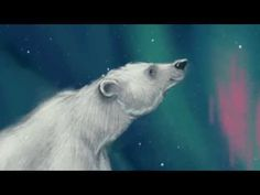 A Light in the Wilderness: The Legend of the North. - - Chalk Art İdeas in 2019 Northern Lights Hotel, Alaska Northern Lights, See The Northern Lights, Alaska Salmon, Artic Animals, Bear Art, Chalk Art, Light Painting, Winter Theme